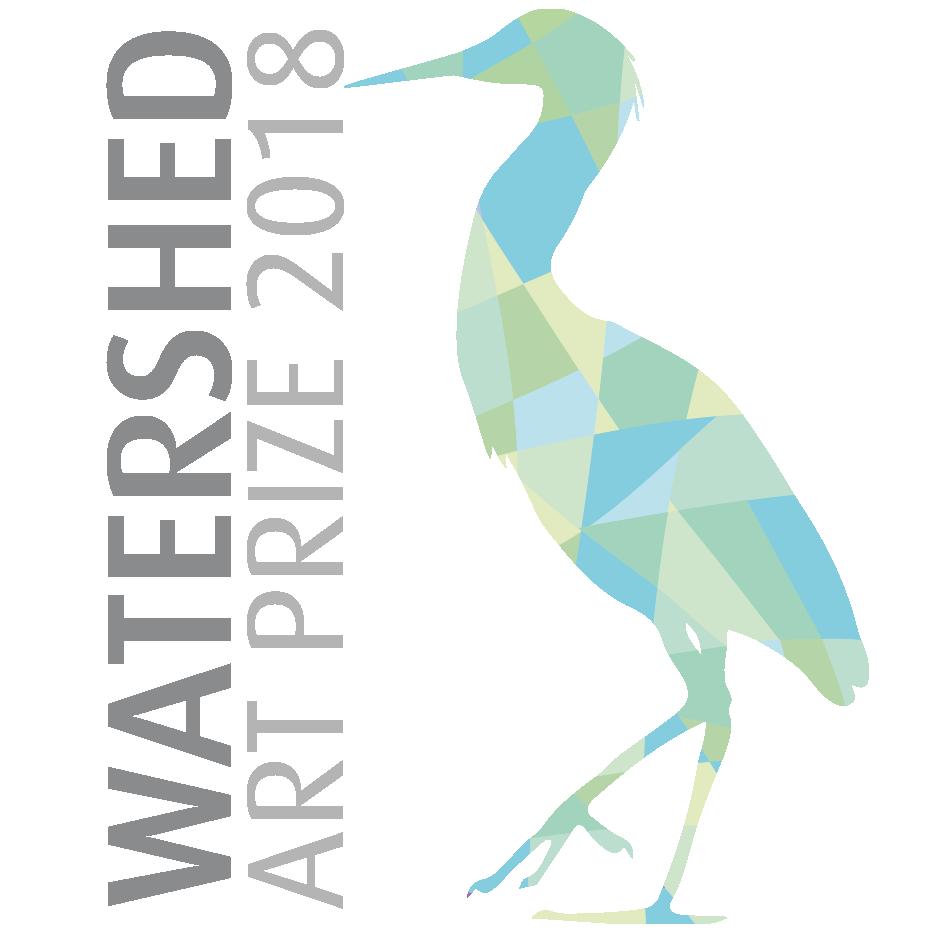 Watershed Art Prize 2018 SCC Web Bog Hero